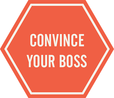 convince your boss 2